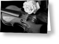 Moody Violin And Rose In Black And White Greeting Card