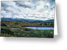 Moody Wetlands Greeting Card