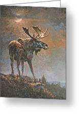 Moon Dusted Moose Greeting Card