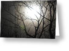 Moon Halo In Winter Greeting Card