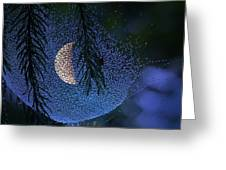 Moon In A Web Greeting Card