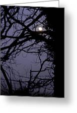 Moon In Inky Blue Sky Greeting Card
