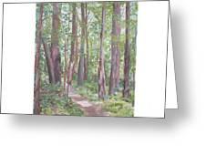 Moon Lake Pathway Greeting Card