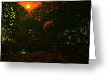 Moon Of Dark Night Greeting Card