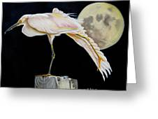 Moon Over Mississippi A Snowy Egrets Perspective Greeting Card