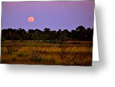Moon Over The Refuge Greeting Card