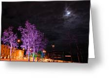 Moonlight And Colored Trees Greeting Card