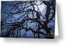 Moonlight And Oak Tree Greeting Card