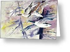 Moonlight Canadian Geese Greeting Card