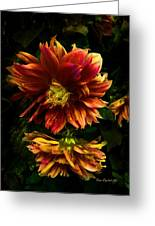 Moonlight Dahlia Greeting Card