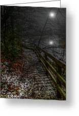 Moonlight On The River Bank Greeting Card
