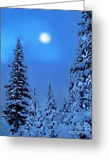 Moonlight  Through The Twilight Haze Greeting Card