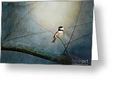 Moonlit Chickadee Greeting Card