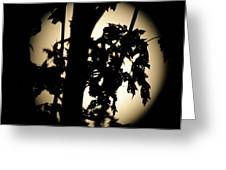 Moonlit Leaves No 1 Greeting Card