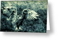 Moonlit Owl Greeting Card