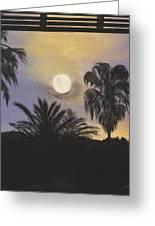 Moonlit Palms In Tampa Greeting Card