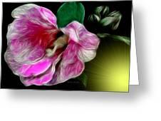 Moonlit Wild Rose Greeting Card