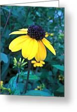 Moonlit Yellow Greeting Card