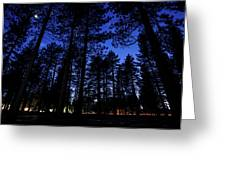 Moonrise In The Woods Greeting Card by Margaret Pitcher
