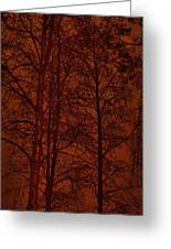Moonshine 11 Red Sky Greeting Card