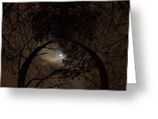 Moonshine 14 The Trees Greeting Card
