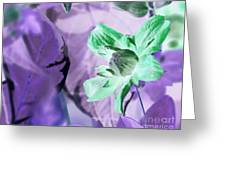 Moonwalk Clematis Greeting Card