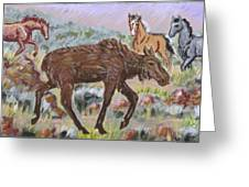 Moose And Horses Animal Vignette From River Mural Greeting Card