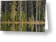 Moose Creek Reservoir Greeting Card
