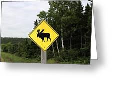 Moose Crossing Greeting Card