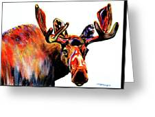 Moose In Orange Greeting Card