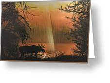 Moose In The Morning Greeting Card