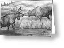 Moose Looking For Love Greeting Card