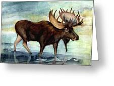 Moose Reflections Greeting Card