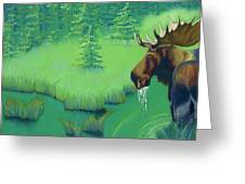 Moose Greeting Card by Tracy L Teeter