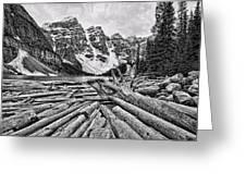 Moraine Lake Driftwood No 1 Greeting Card