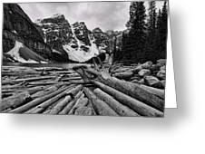 Moraine Lake Driftwood No 2 Greeting Card