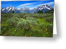 Moran Meadows Greeting Card