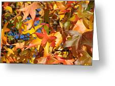 More Autum Leaves Greeting Card