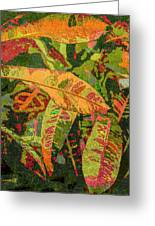 More Fern Abstraction Greeting Card