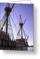 More Mayflower In Mystic Greeting Card