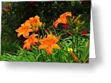 More Orange Daylilies Greeting Card