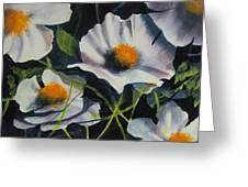 More Poppies Greeting Card