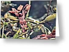 More Seaweed Greeting Card