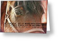 Morgan Horse Quote Greeting Card