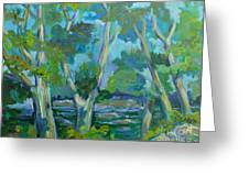 Moria River At Belleville Greeting Card