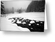 Morn In White Greeting Card