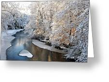 Morning After Snowfall Greeting Card
