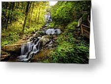 Morning At Amicalola Falls Greeting Card