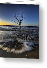 Morning At Botany Bay Plantation Greeting Card