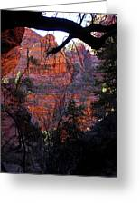 Morning At Zion National Park Greeting Card